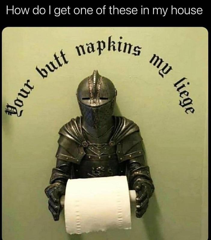 your butt napkins my liege - meme