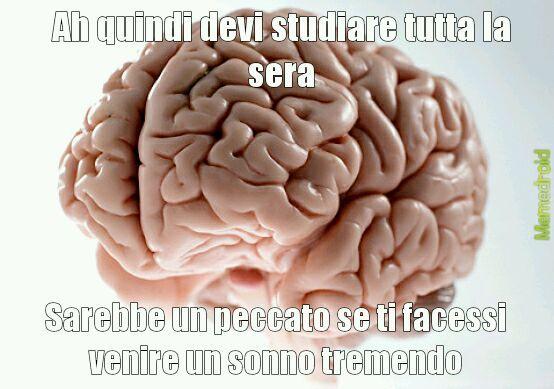 Scherzi del cervello - meme