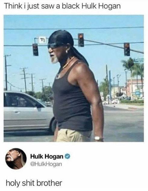 The Best Hulk Hogan Memes Memedroid