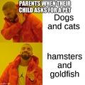 Parents when the kid wants a pet