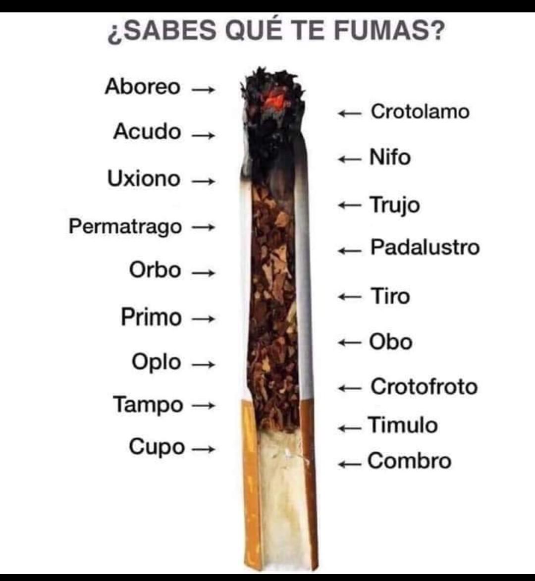 Que es obo? - meme