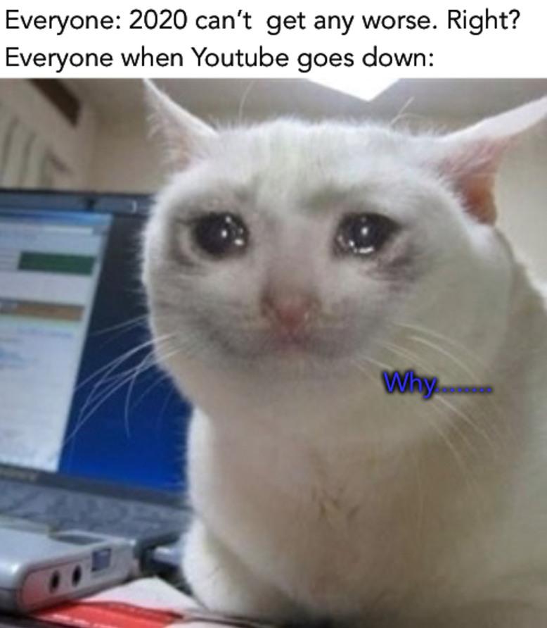 Just wait till the whole internet gets shut down - meme