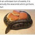 The anaconda got buns