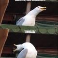 Mi primer meme original