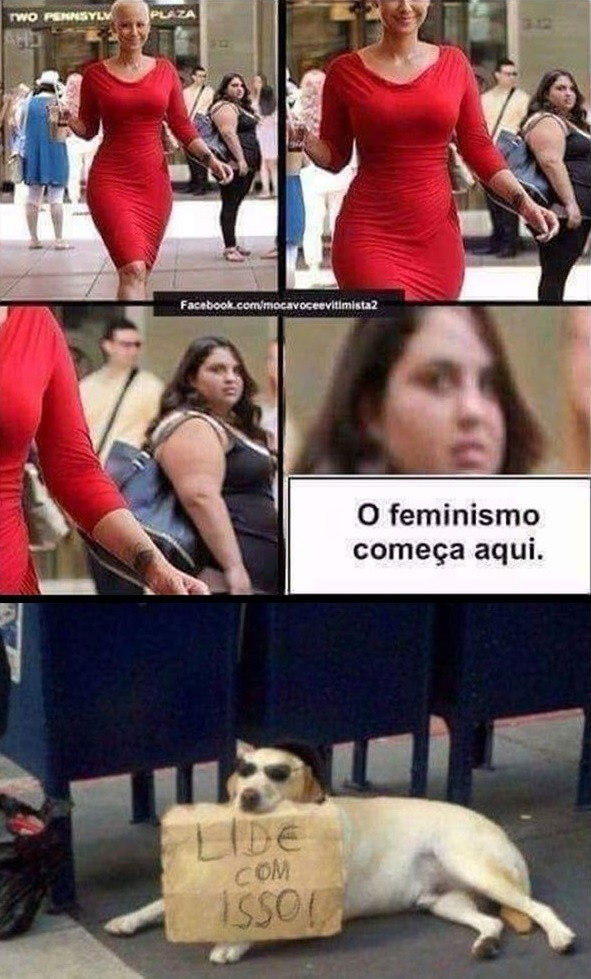Feminismo é coisa de Gorda - meme