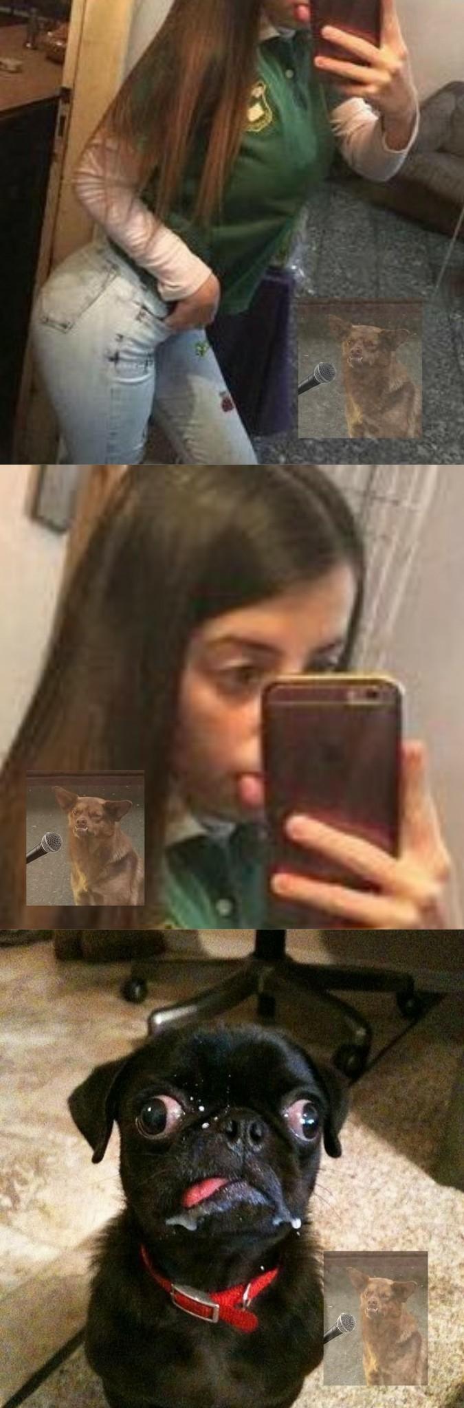 La chica Pug... - meme