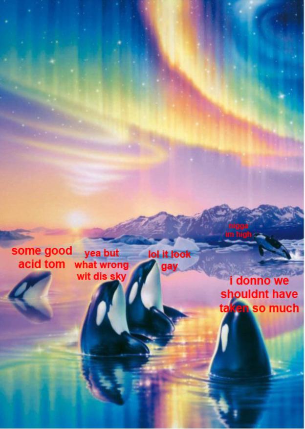 I LOVE LSD - meme