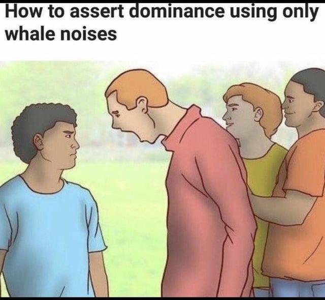 Comemnt dominer avec des cris de baleine - meme
