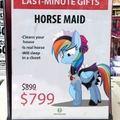 Compre agora a sua Égua Faxineira