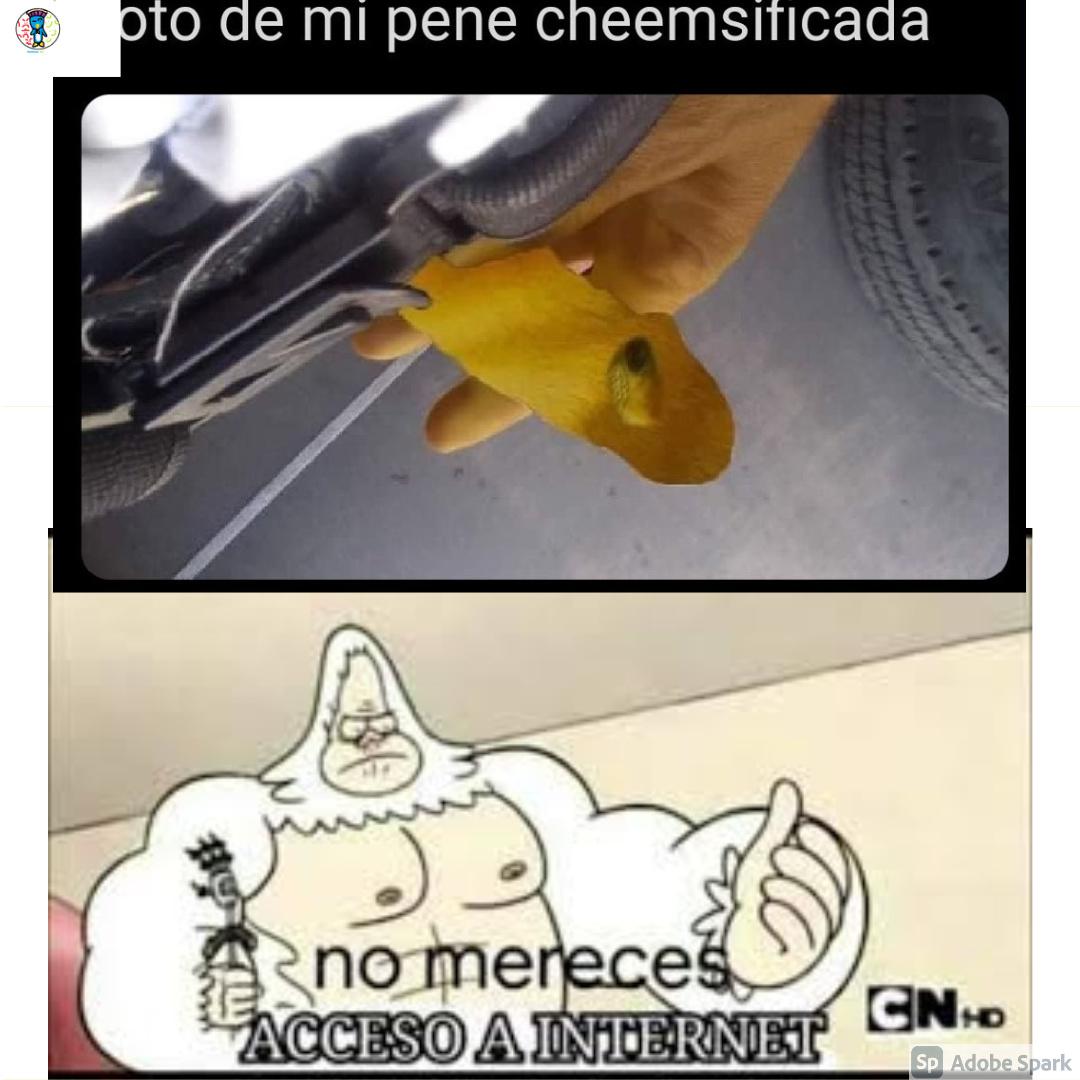 NO,NO Y NO! - meme