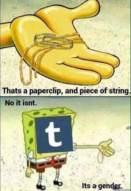 Tumblr - meme