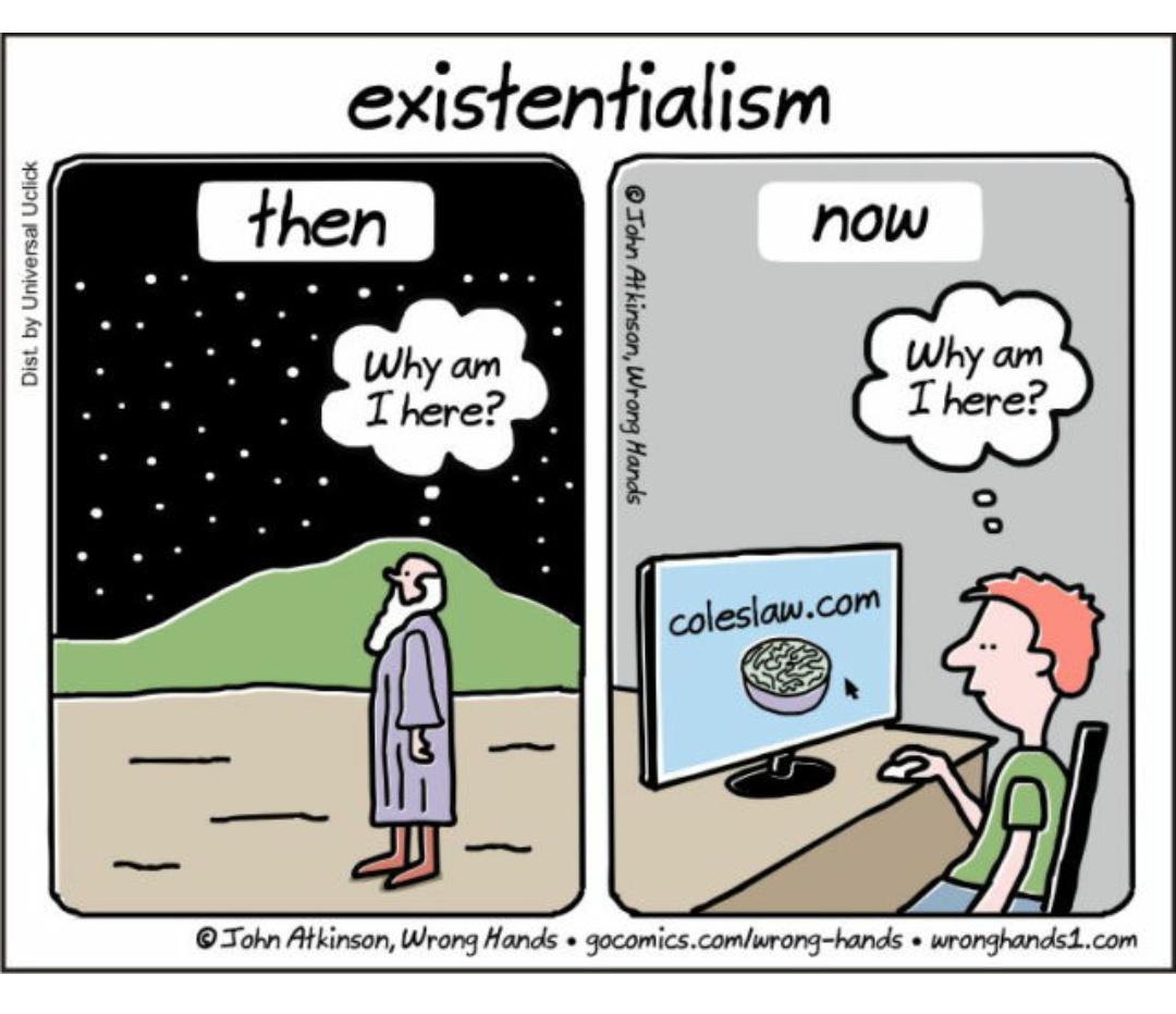 Websistential crisis - meme
