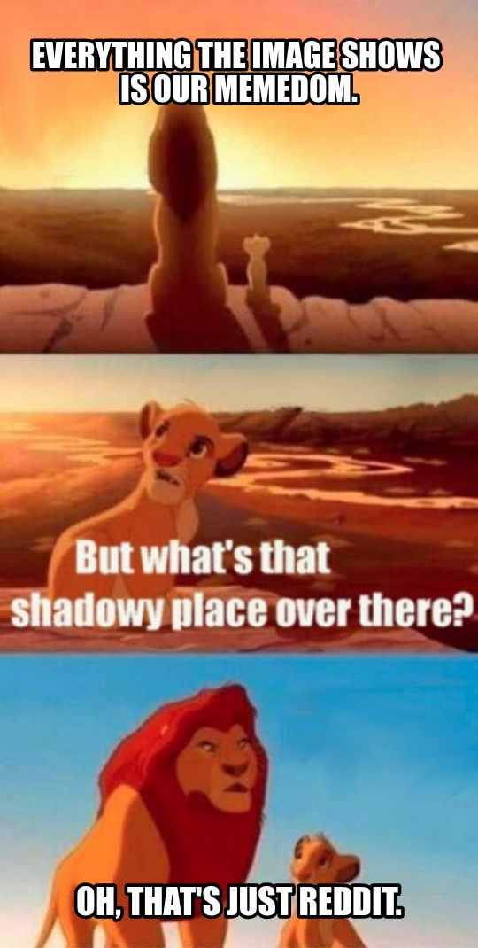 Really, Mufasa? - meme