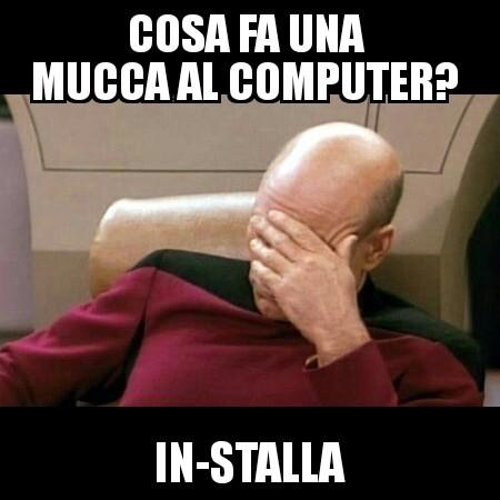 # - meme