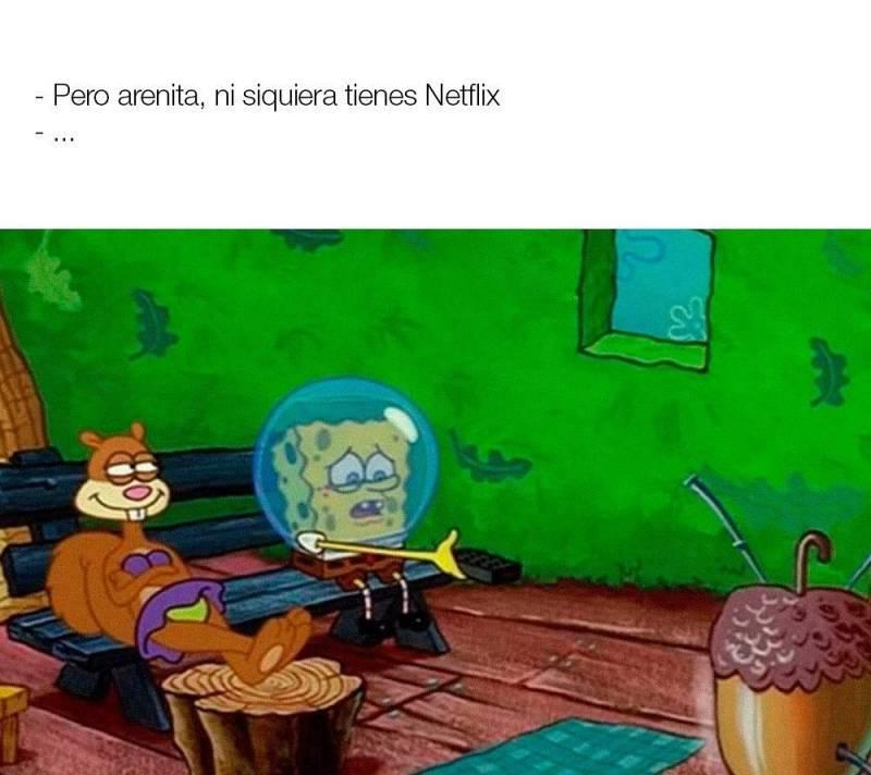 El netflix... - meme