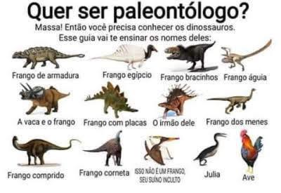 Dinossarro - meme