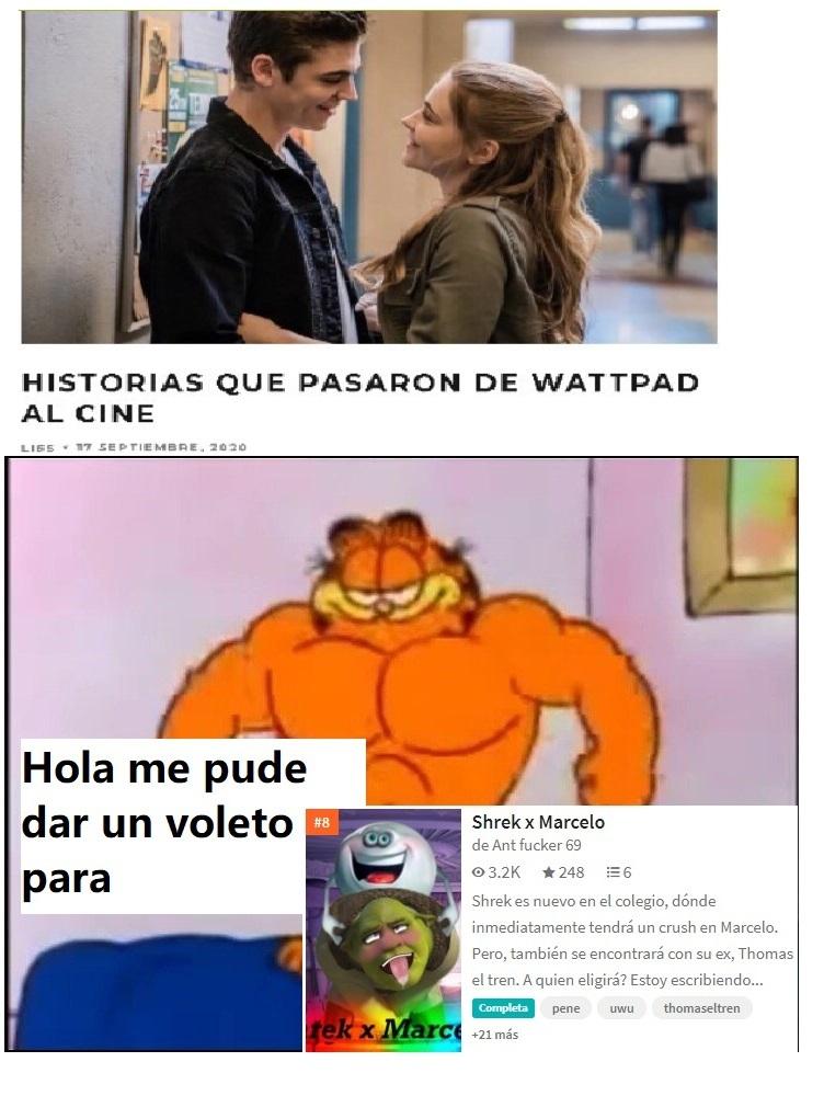 dommm - meme