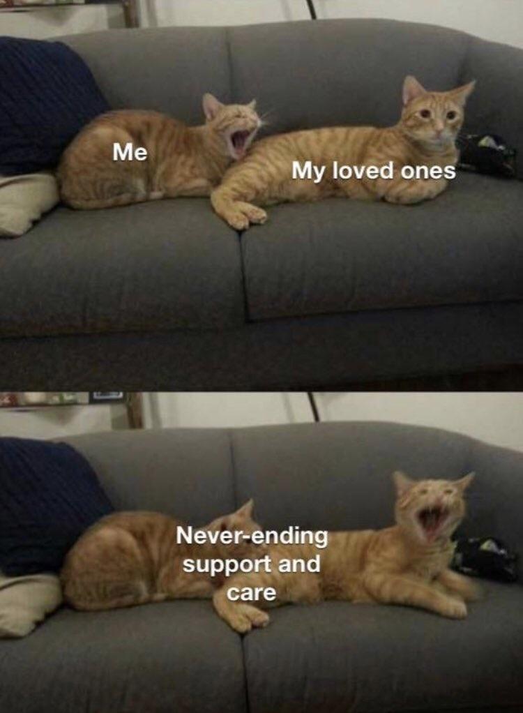 strawberries love - meme