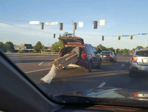 Son hold the wood down to we get home... WTF?