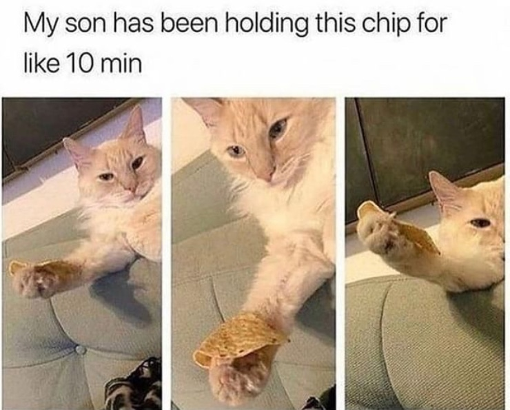 can I give you a chip for these trying times - meme