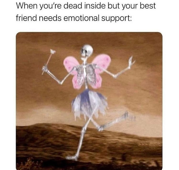 Skelton fairy - meme