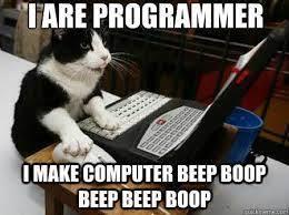 cats are also smart - meme