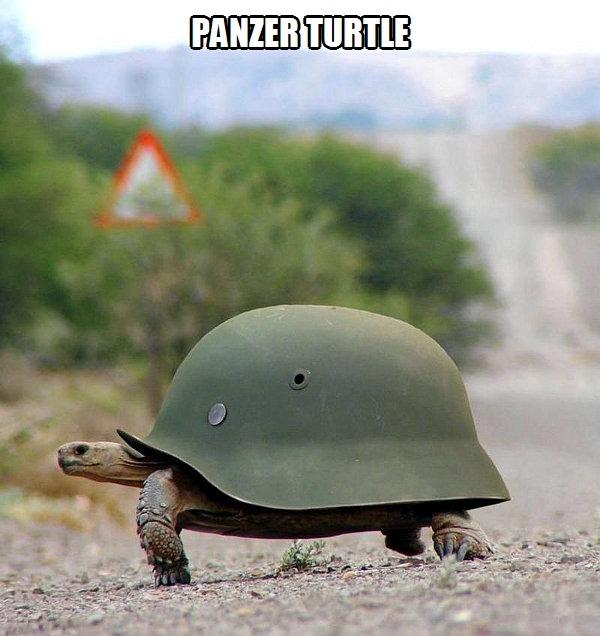 Panzer turtle - meme