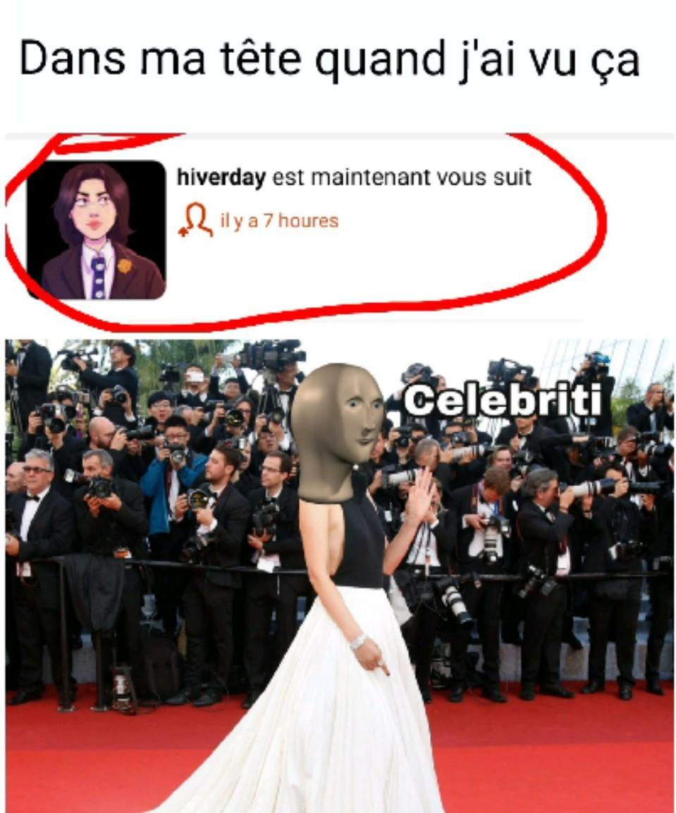 La célébrité - meme