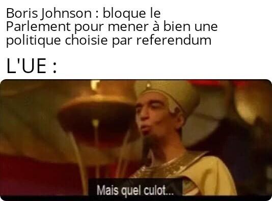 Le titre fait usage du referendum - meme