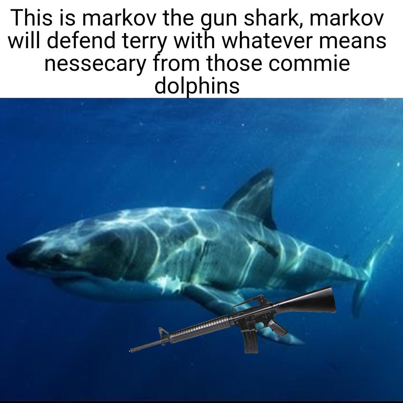 Markov the gun shark - meme