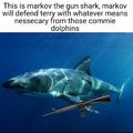 Markov the gun shark