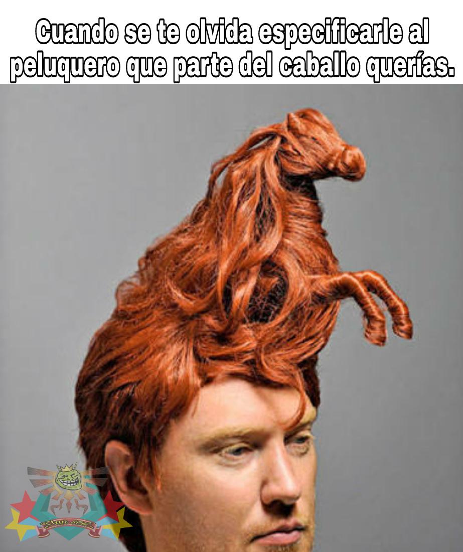 Cola de caballo. - meme