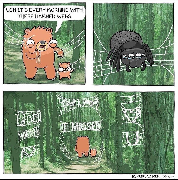 fresh webs in the morning - meme
