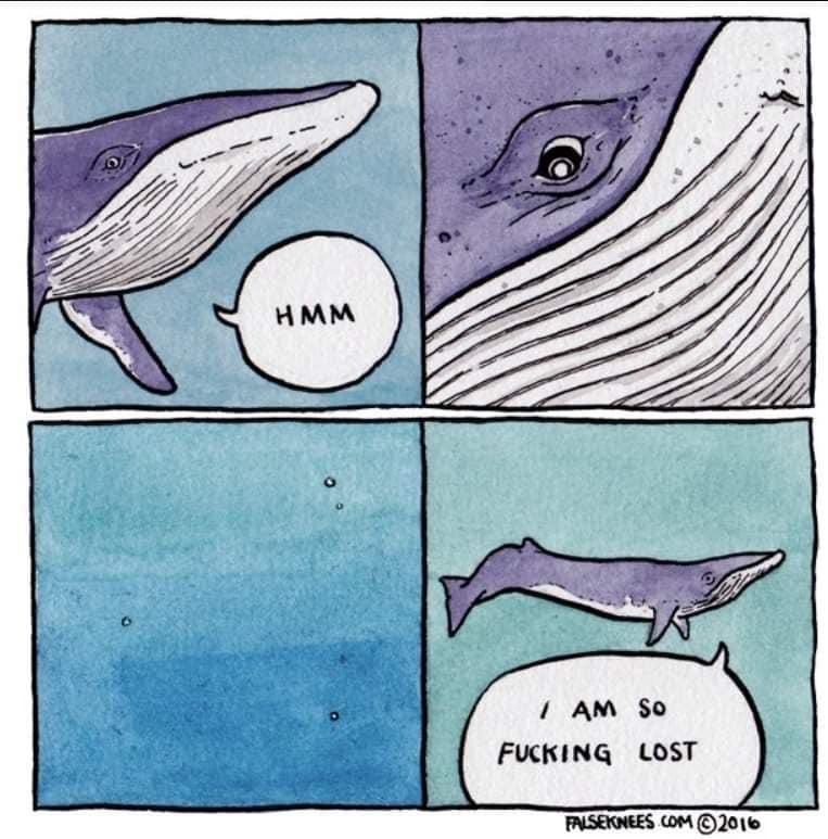 Ah yes the deep ocean cow - meme