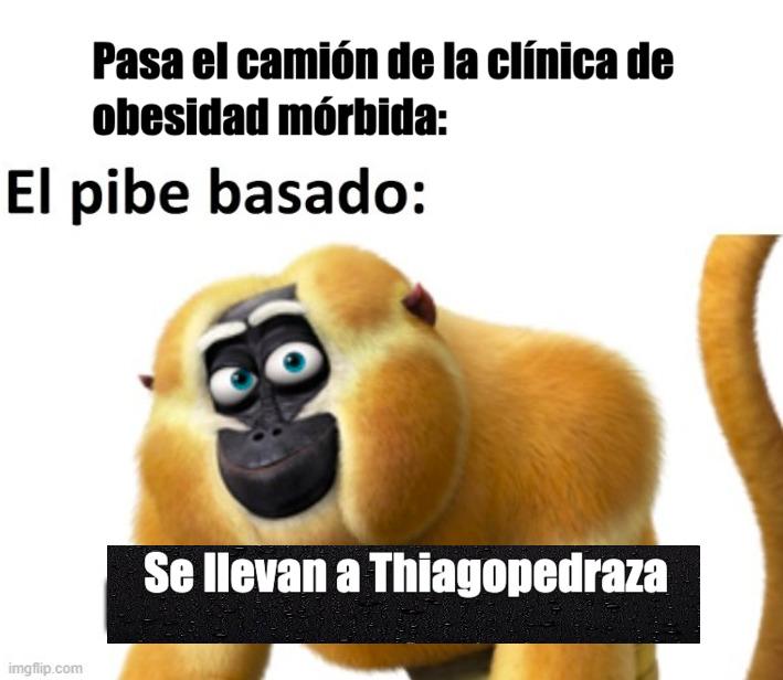 Thiagoboladegrasa momo - meme