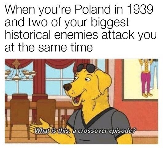 Poor poland - meme