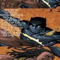 Me da risa este panel porque si te fijas bien, parece que pantera negra tiene unas cejototas xd