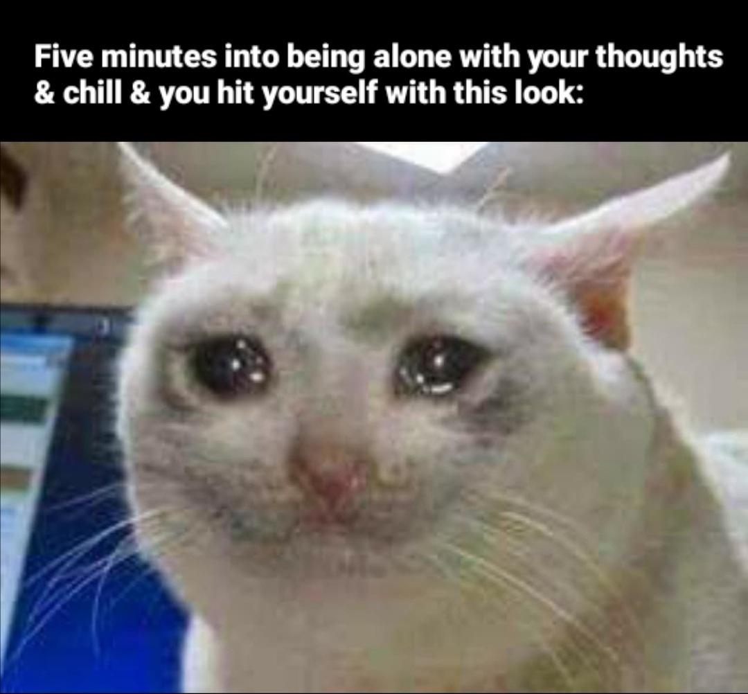 Remember when you were happy? - meme