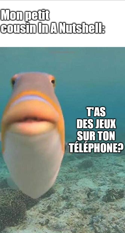 Le Fish has arrived - meme