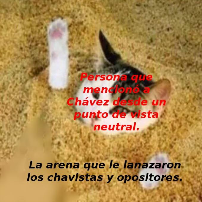 Si viajan a Venezuela ni se les ocurra mencionar a Chávez, que la arena que pueden levantar es impresionante. - meme