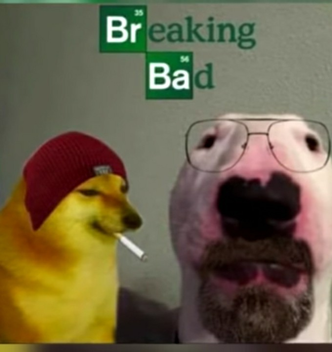 Bomnito - meme