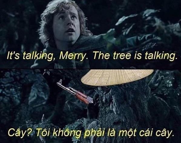 Vietnam Baybee - meme