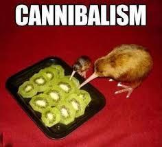 kiwi vs kiwi - meme