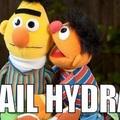 Hall Hydra