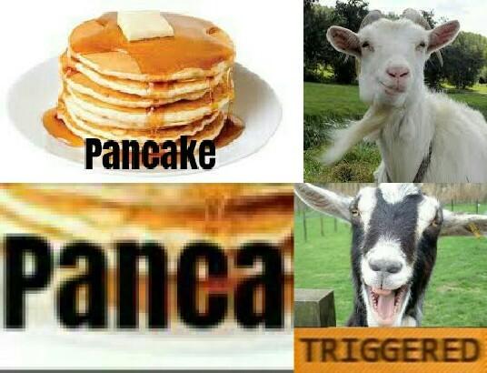 """sopra la panca la capra campa sotto la panca la capra crepa"" - meme"