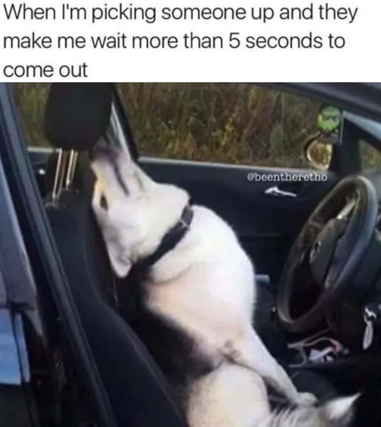 come onnnnn - meme