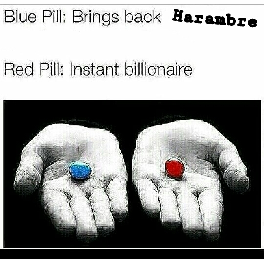 Only pick one *red* - meme
