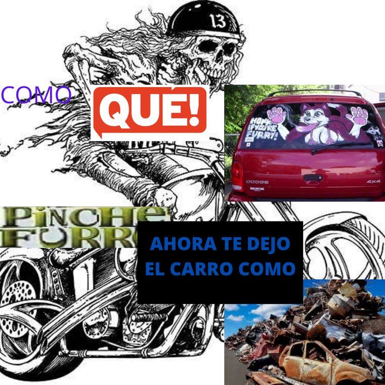 COMO QUE HONK IF YOU ARE FURRY?? PICHE FURRO AHORA TE DEJO EL CARRO COMO CHATARRA - meme