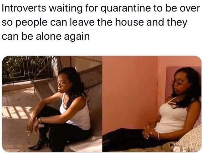 Life of an Introvert - meme