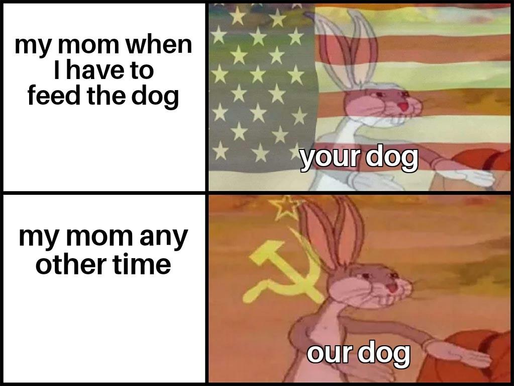 Our dog...comrade - meme